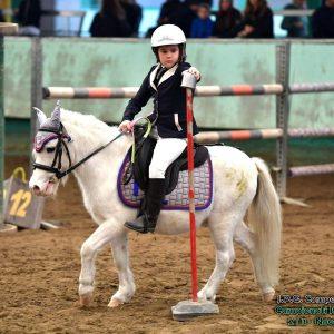 gara pony